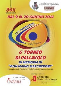 2014_torneo_volley_Don_Mario