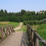 Il ponte e sullo sfondo Gorla