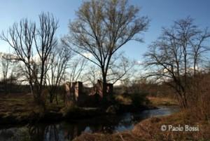 fagnano_olona-fiume_olona_05